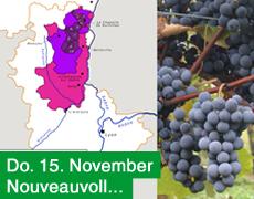 15. November: Beaujolais Primeur frisch im Depot!