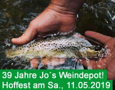 Hoffest 2019 am 11.Mai!